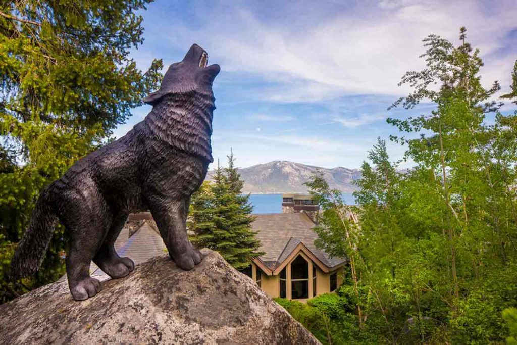 Crystal Pointe Lake Tahoe Dream Home Garden wolf statue